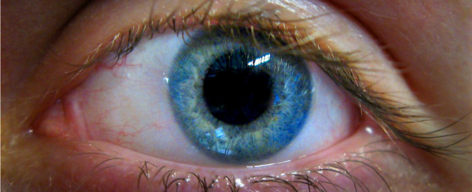 retina-occhio-67